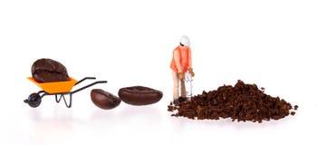 Miniaturowy pracownik pracuje na kawowej fasoli Fotografia Royalty Free