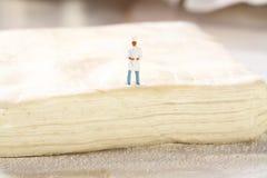 Miniaturowy szefa kuchni ciasto A obraz royalty free