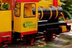 Miniaturowy wycieczka turysyczna pociąg w parku w Chimbote, Peru zdjęcia royalty free