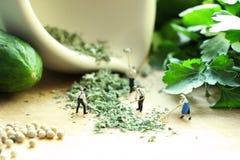 Miniaturpuppen, die Gemüse kochen Lizenzfreie Stockfotos