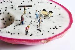 Miniaturvölker Stockbilder