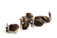 Miniaturvölker mit Kaffeebohne Stockfotos