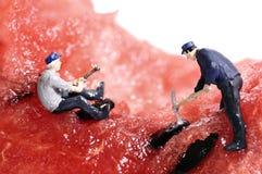 Miniaturvölkerarbeit über Wassermelone Lizenzfreies Stockfoto