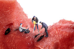 Miniaturvölkerarbeit über Wassermelone Lizenzfreie Stockfotos