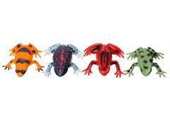 Miniatuur Kikkers stock afbeeldingen