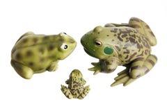Miniatuur Kikkers stock foto's