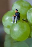 Miniatuur van een mensenzitting op de druiven stock fotografie