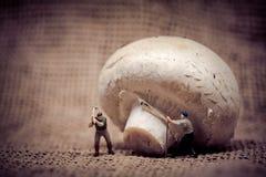 Miniatuurarbeiders die de paddestoel van Gian verminderen Het concept van het voedsel Gestemde kleurentoon royalty-vrije stock foto's