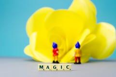 Miniatuurdwergen met magisch teken Stock Fotografie