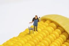 Miniatuurmensen Stock Foto's