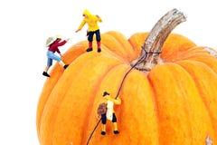 Miniatuurmensen Stock Fotografie