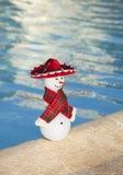Miniatuursneeuwman die sombrero dragen door een pool stock foto's