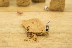 Miniatyr av lumberkacks arkivfoton