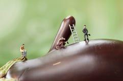 Miniatyrarbetare på en aubergine Arkivfoto