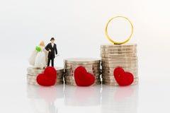 Miniatyrfolk: Brud- och brudgumanseende på bunt av mynt med vigselringar Avbilda bruk för att spara pengar för att gifta sig, ack arkivbild