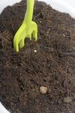 Miniatyrhjälpmedel för floriculture Små gafflar för att odla jorden i blomkrukor Royaltyfria Bilder