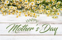 Miniatyrtusenskönor eller kamomill på en vit plankabakgrund med hälsning för dag för moder` s arkivfoto