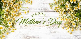 Miniatyrtusenskönor eller kamomill på en vit plankabakgrund med hälsning för dag för moder` s arkivbilder