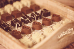 Minichocoladesnoepjes Royalty-vrije Stock Foto's