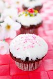 Minicupcakes Royalty Free Stock Images