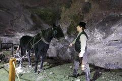 Miniera di sale di Wieliczka Immagine Stock Libera da Diritti