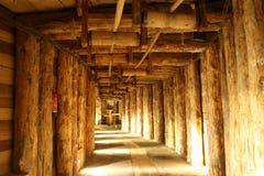 Miniera di sale di Wieliczka (Polonia) Fotografie Stock Libere da Diritti