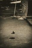 Minigolfloch mit schwarzem Weiß des Schlägers und des Balls Stockfotografie