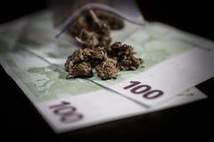 Minigrip with marijuana and money Royalty Free Stock Photos