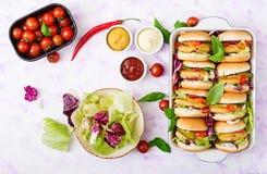 Minihamburgers met kippenhamburger, kaas en groenten Stock Afbeeldingen