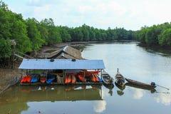 Minihuis en steenberg in het mangrovemoeras Royalty-vrije Stock Foto's