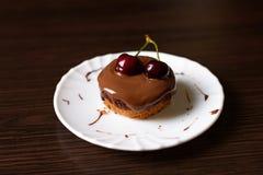 Minikaastaart met chocolade en kers Royalty-vrije Stock Afbeeldingen