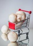 Minikar het winkelen heksen organische paddestoelen op lichte achtergrond Dieet, gezondheid of vegetarisch voedselconcept Stock Fotografie