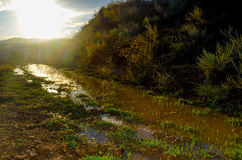 Minilake. A big dirty puddle on the way in front of sun Stock Images