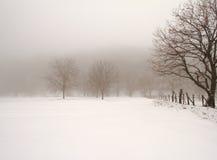 Minimaal de winterlandschap Stock Afbeeldingen