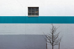 Minimal with Blue Stripe, Tree and Window. A simple wall in an industrial area of Portland, Oregon Royalty Free Stock Photos