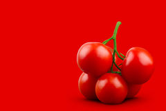 Minimal composition of tomatoes on red background Royalty Free Stock Images