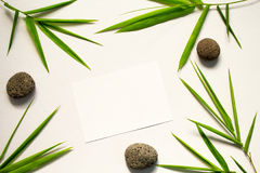 Minimal flat lay with green leaf and stone. Bamboo leaf and sea pebble on white background. Bamboo decor. Spa beauty banner template with place for text. Blank royalty free stock image