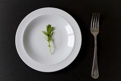 Minimal food in a dish. Minimal food concept in a white dish over a black background Stock Photo