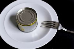 Minimal food in a dish. Minimal food concept in a white dish over a black background Royalty Free Stock Photo
