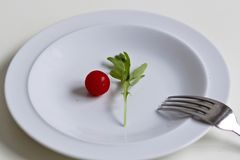 Minimal food in a dish. Minimal food concept in a white dish over a black background Royalty Free Stock Images