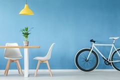 Minimal interior with furniture. Minimal, modern interior with two chairs, a bicycle, a table with a plant on it and a yellow lamp above, against blue wall Royalty Free Stock Image