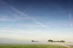 Minimal landscape. A foggy landscape with minimal land. Contrails cross the sky and a mist obscures a couple of trees Stock Photo