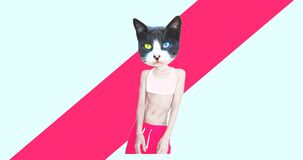 Minimal motion art. Fashion dancing Cat in colours geometry background