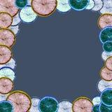 Minimal c orange fruit, abstract art. Minimal orange fruit on a flat lay, funky illustration, abstract art Stock Photos