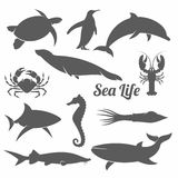 Minimal sea animals vector illustration. Black and white vector illustration set of silhouettes of sea animals in the minimal style Royalty Free Stock Image