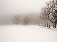 Minimal winter landscape stock images