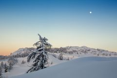 Minimal winter landscape in Slovenia-Europe. Simple, minimal winter landscape somewhere in Slovenia-Europe Stock Photography