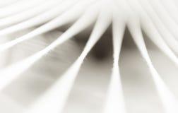 Minimale Abstraktion des Sepia ropes Hintergrund Stockbilder