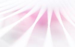 Minimale Abstraktion ropes mit rosa hellem Leckhintergrund Lizenzfreies Stockbild