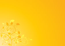 Minimale bloemenachtergrond Royalty-vrije Stock Afbeeldingen